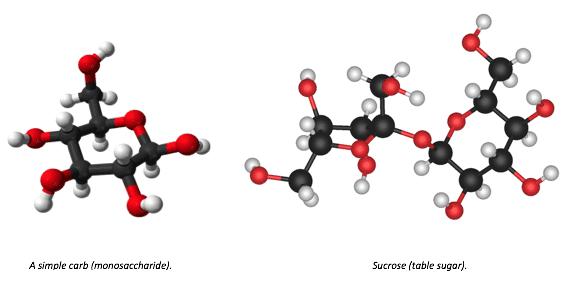 https://www.cell.com/iscience/pdf/S2589-0042(20)30645-3.pdf