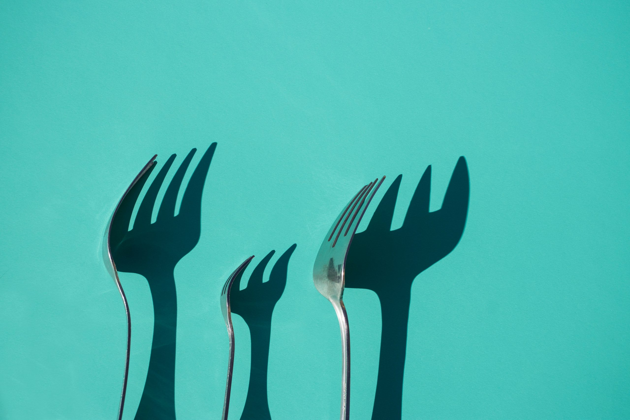 Photo of shadowed forks on background | Diet and meal replacements
